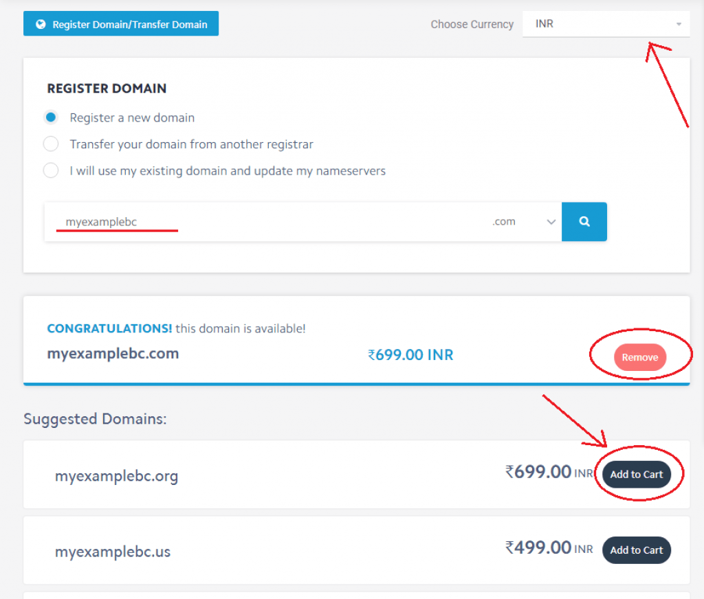 mewnix domain registration