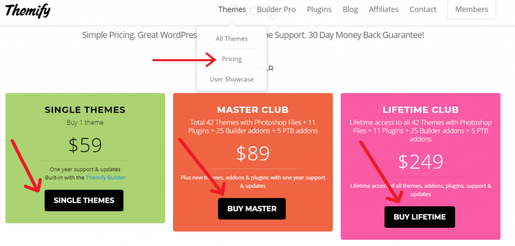 themify pricing